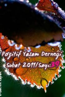 subat2011_kapak(1)