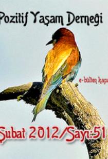 subat2012kapak